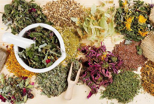 Лекарственные травы - лучший ингредиент в народных средствах лечения
